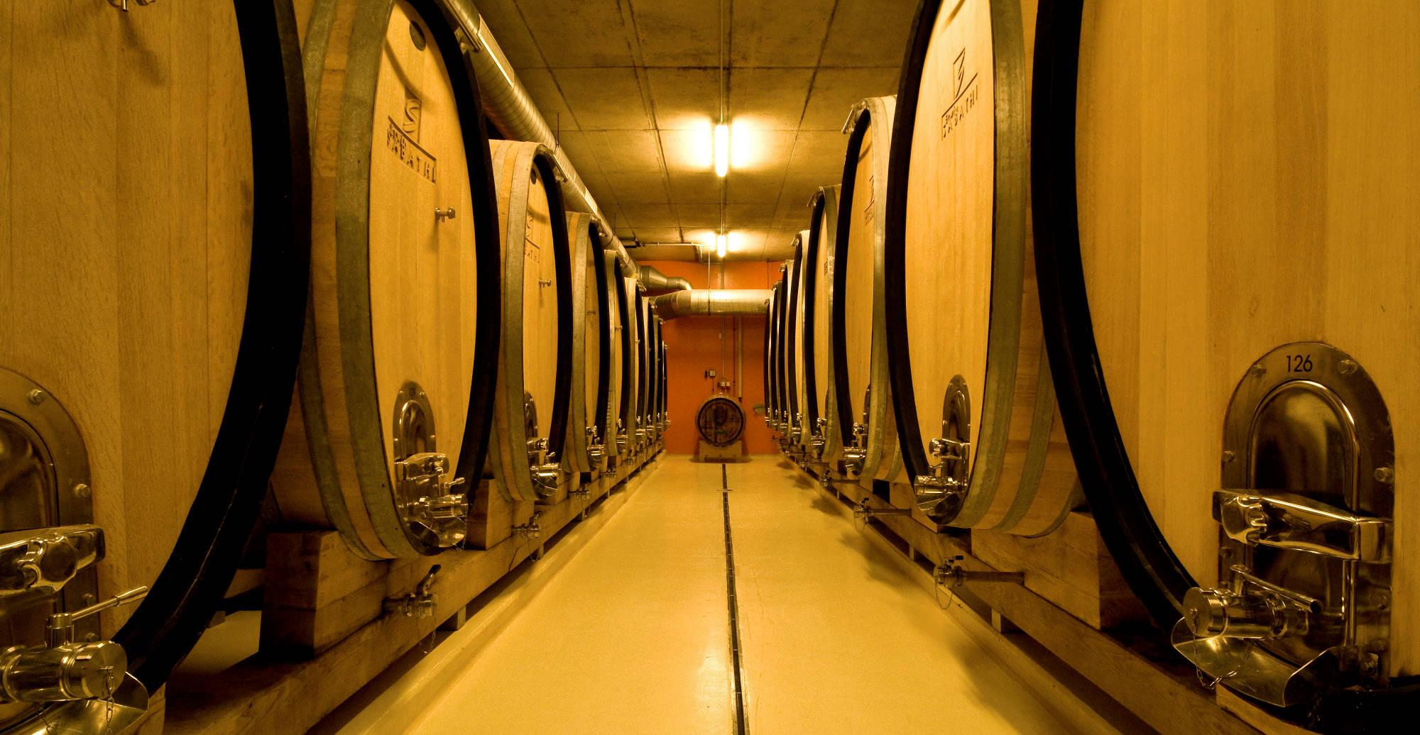 Weinkeller mit zwei Reihen Holz-Weinfässern.