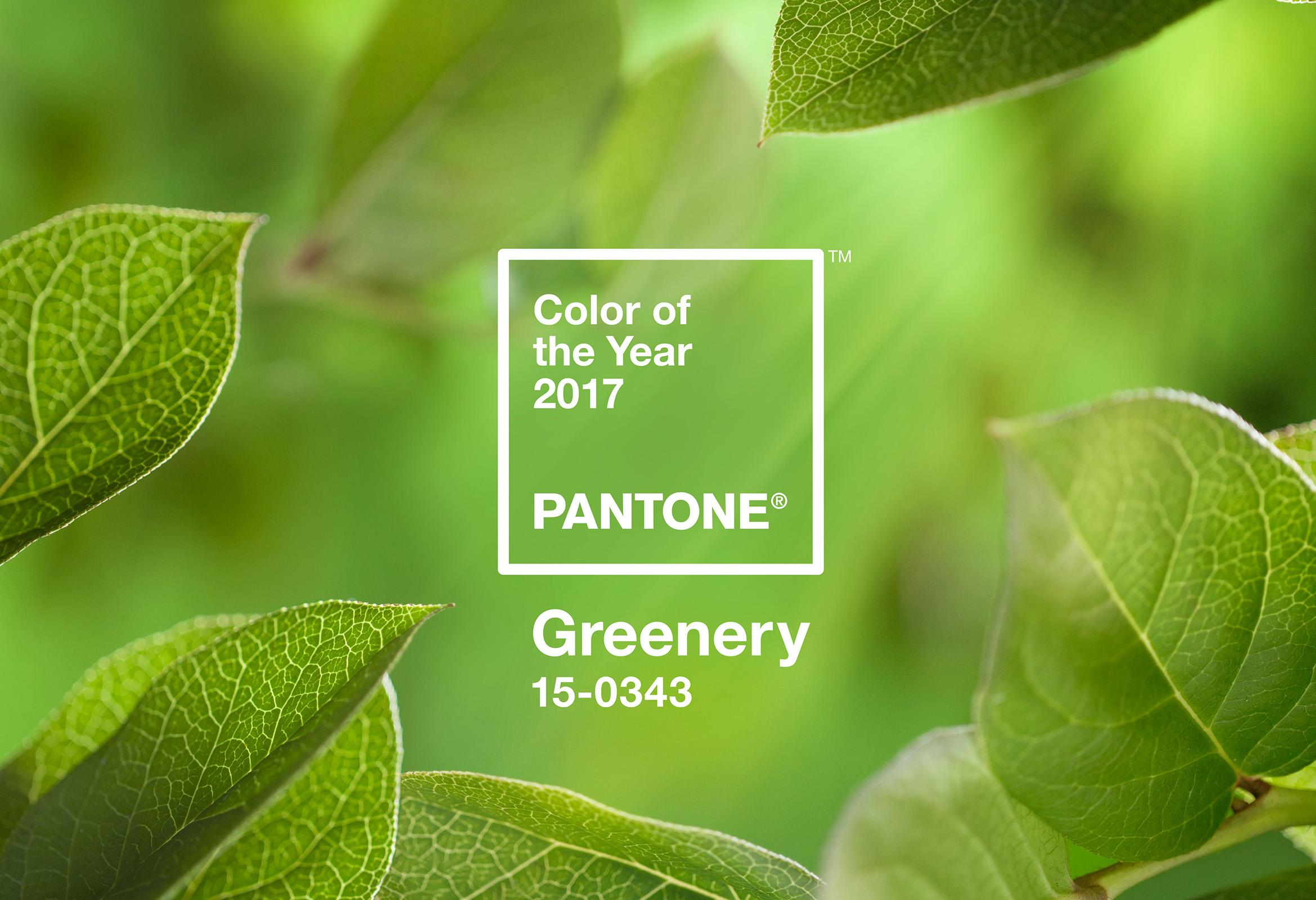 trendfarbe 2017 greenery strasser steine. Black Bedroom Furniture Sets. Home Design Ideas