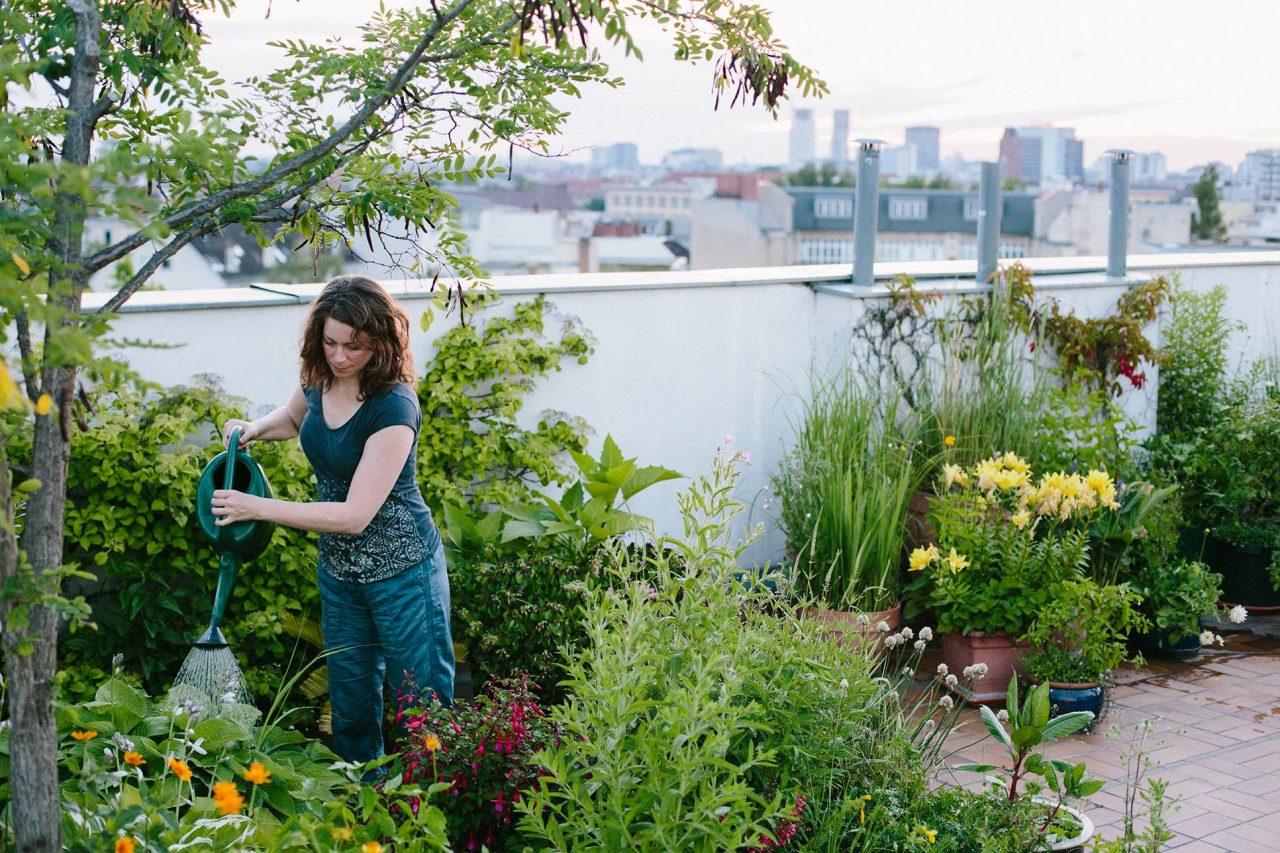 Urban Gardening am Hausdach in der Stadt