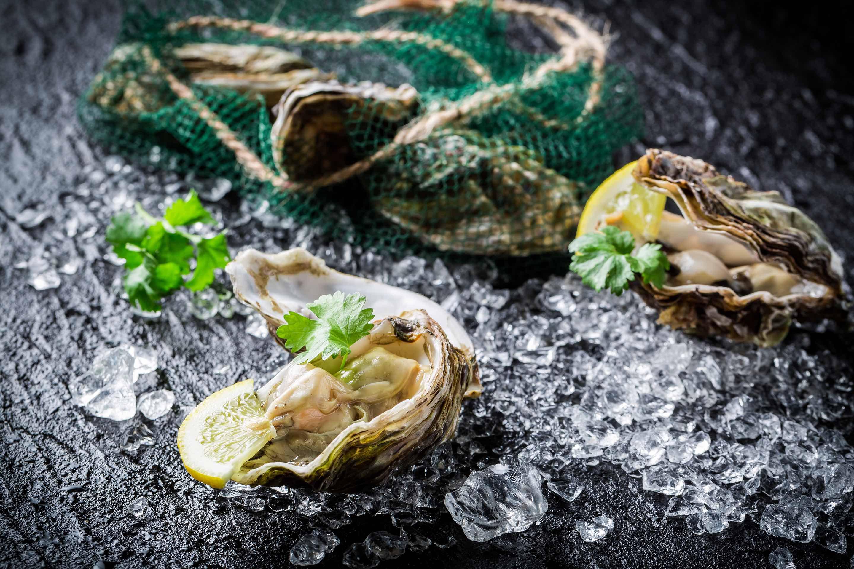 Geöffnete Austern auf Eis mit Zitrone und Petersilie garniert.