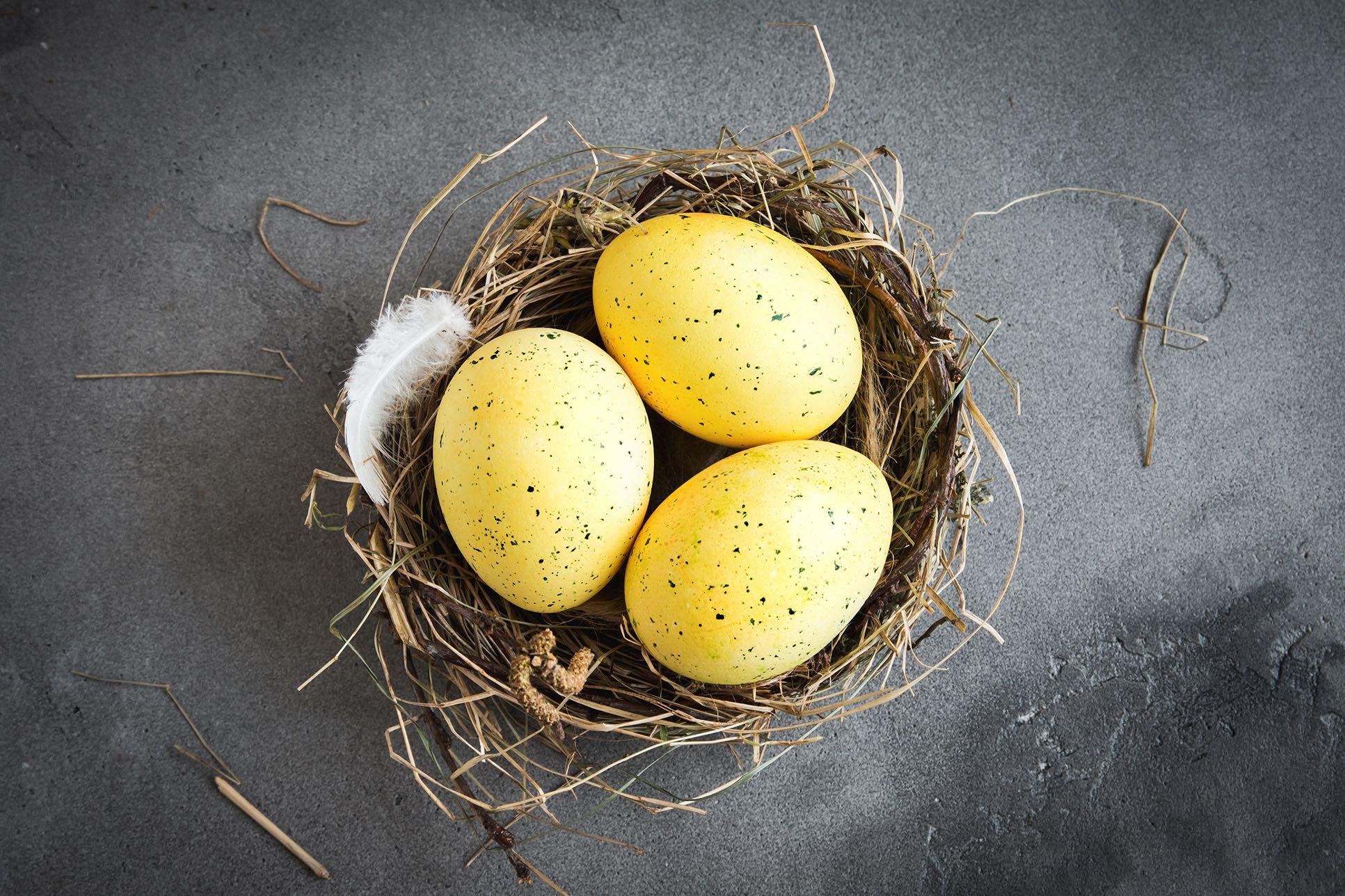 Gelbe Ostereier in einem kleinen Osternest.