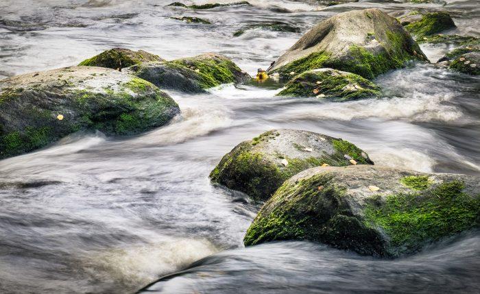 Stein, mit Moos bewachsen in einem sanften Bachlauf