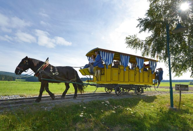 Mühlviertler Pferdeeisenbahn in Fahrt